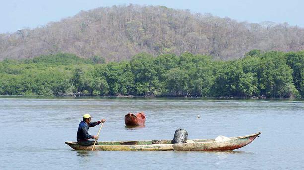 Cangrejeros y pescadores artesanales se movilizan en contra la tala indiscriminada y la contaminación de losmanglares